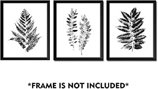 Gronda Black and White Fern Leaf Plants Wall Art Prints Poster for Living Room Bedroom Bathroom 8x10 inch,3 Panels