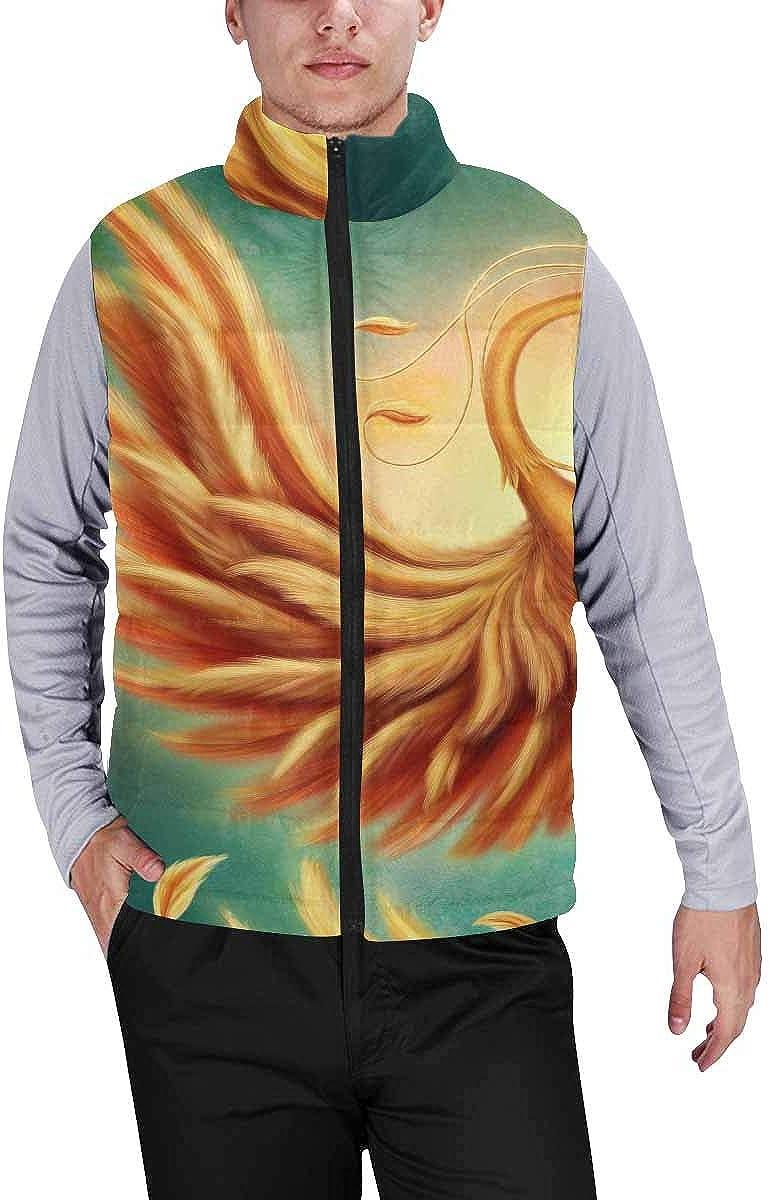 InterestPrint Men's Lightweight Vest Softshell for Camp Magic Firebird XS