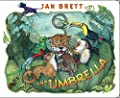 The Umbrella: board book