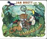 Umbrella Parasols - Best Reviews Guide