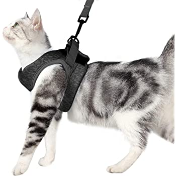 Lead for puppy dogs PiuPet/® Cat Harness incl 1.20m cat leash Size S Escape-proof /& Robust Cat Collar