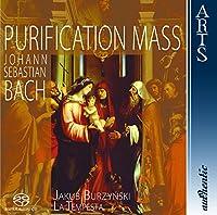Purification Mass (Hybr)