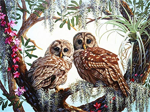 DIY 5D Diamond Painting Kits Full Drill,Crystal Rhinestone Cross Stitch Diamond Painting Adults/Kids Mosaic Pictures Embroidery Art Craft for Home Wall Decor(Owl Tree 50x60cm/20x24in Round Drill)