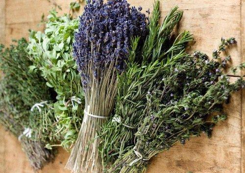 Kräuter Provence Mischung 200