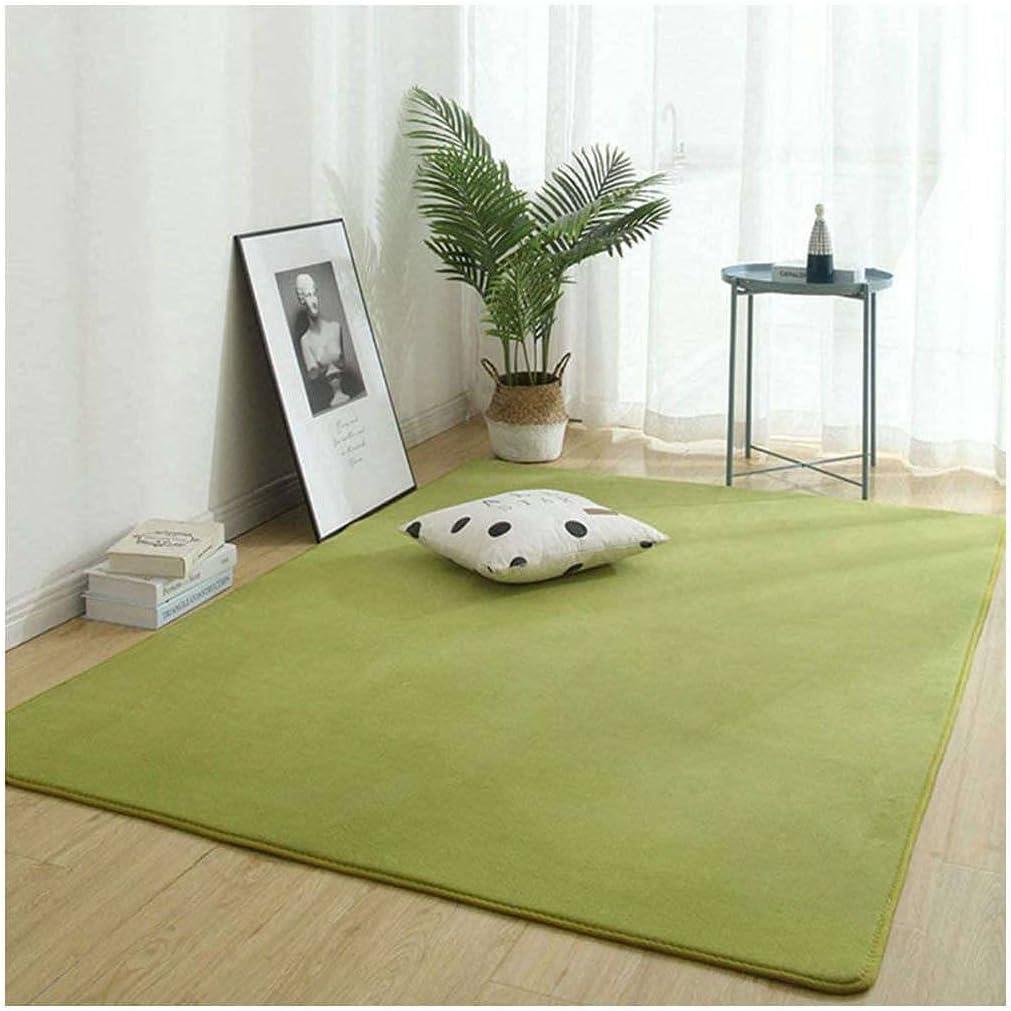 税込 Child Rug スピード対応 全国送料無料 Low Pile Carpet Area Accent Velvet Ant
