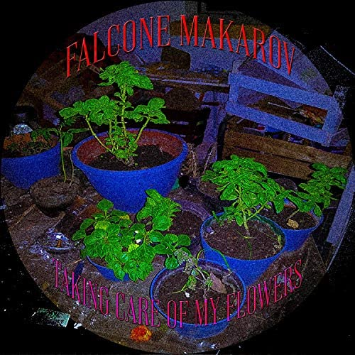 Falcone Makarov