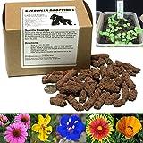 Guerrilla Droppings- Native to Your zipcode! Pollinator-Friendly Wildflower Gardening Pellets