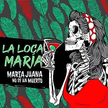 La Loca María