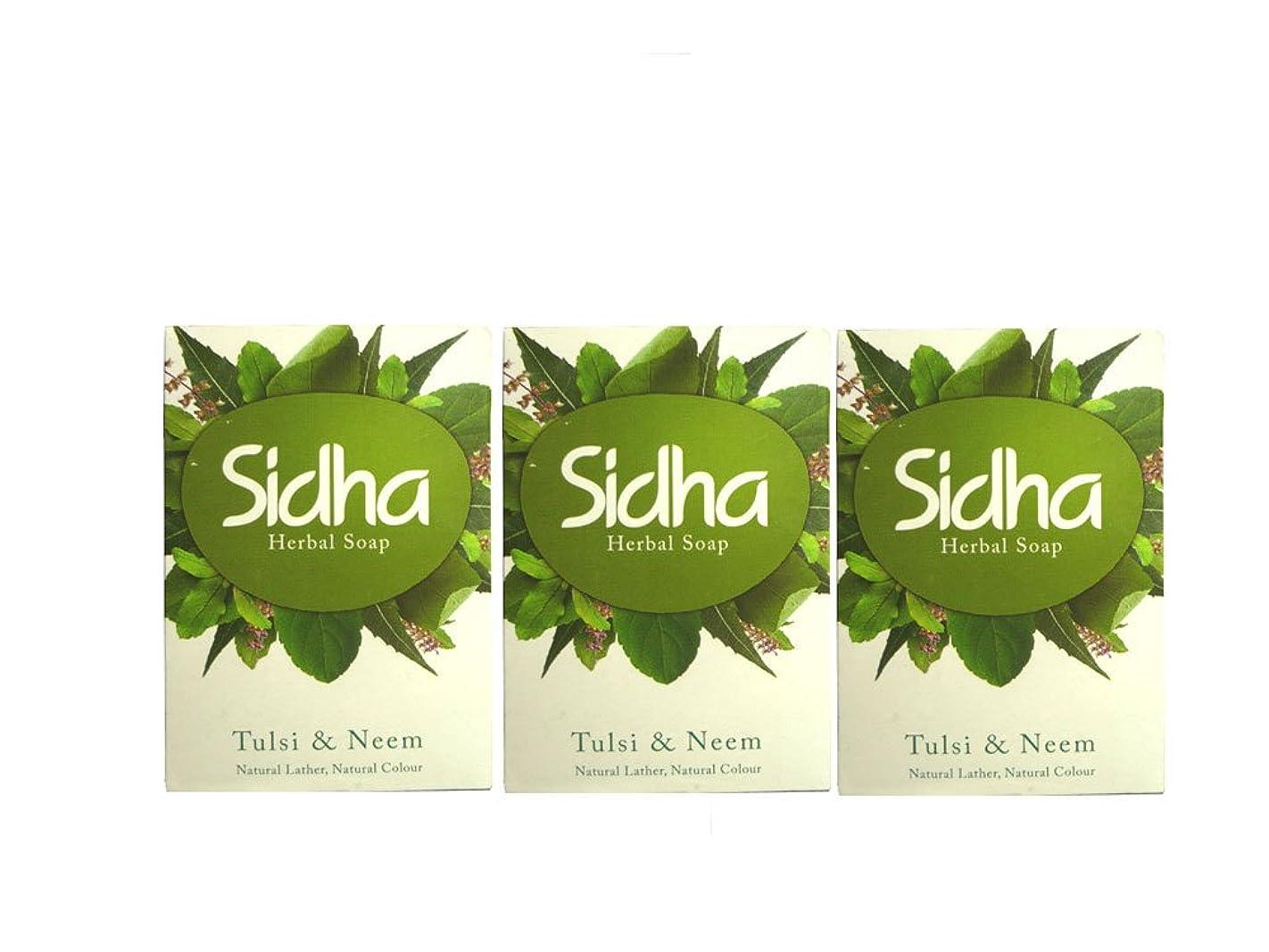 軽セグメント細心のSIHDH Herbal Soap Tulsi & Neem シダー ハ-バル ソープ 75g 3個セット