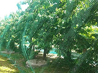 CandyHome 13Ft x 33Ft Anti Bird Protection Mesh Garden Netting Seedlings Plants Flowers Fruit Trees Vegetables from Rodent...
