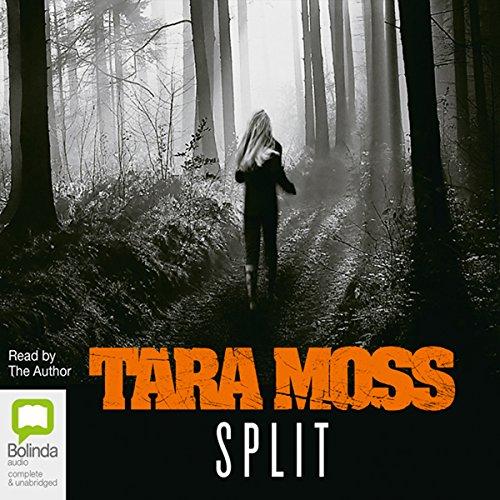 Split audiobook cover art
