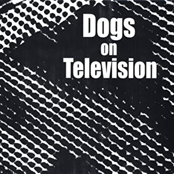 Dogs On Television