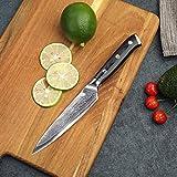 PAUDIN Damast Messer Allzweckmesser 13cm - scharfe Japanisches AU10 Küchenmesser mit ergonomischem Micarta-Griff - 8
