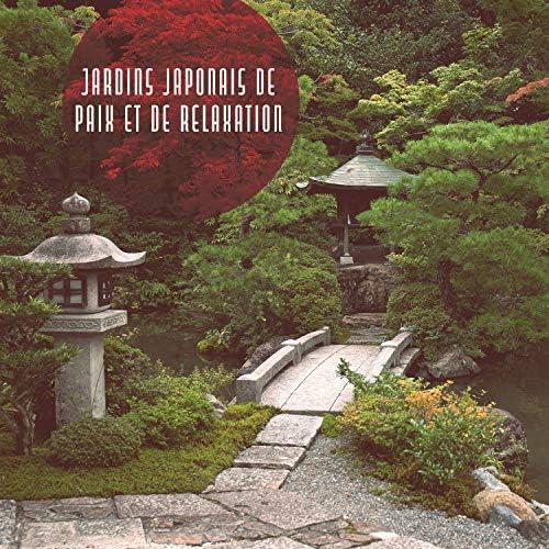 Collection de Nature Sons de Méditation