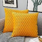 Yamonic Kissenbezüge Set Samt Soft Solid Dekorative Kissen Fall für Sofa Schlafzimmer 50cmx50cm 2er Pack für Couch Bett Sofa Stuhl Schlafzimmer Wohnzimmer, Gelb