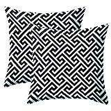 JOTOM Fundas de cojín súper Suaves y geométricas Simples para sofá Cama Fundas de Almohada Cojines Decorativos para el hogar 45X45cm, Juego de 2 (Patrón Blanco y Negro 4)