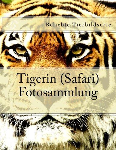 Tigerin (Safari) Fotosammlung: Beliebte Tierbildserie