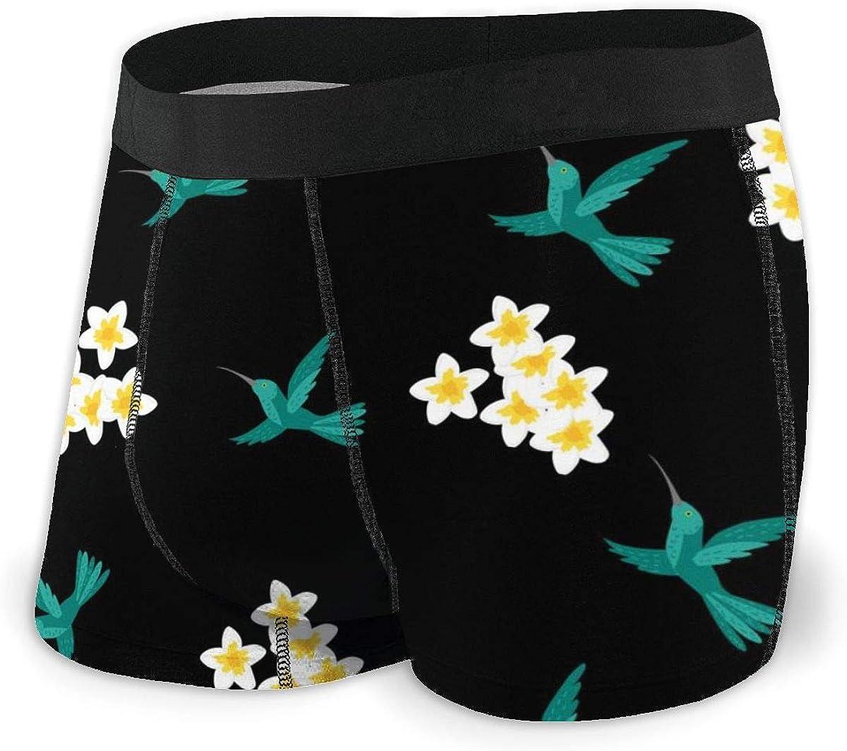 Mens Boxer Briefs Floral Birds Hummingbird, Hibiscus Flowers Breathable Underwear