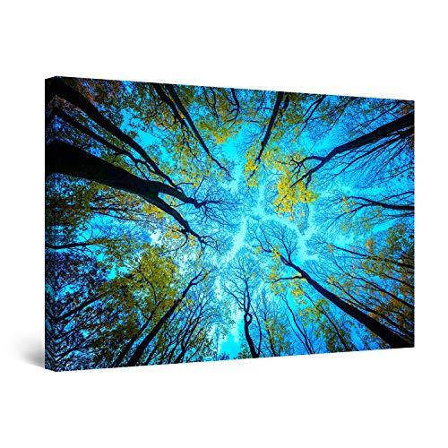 Startonight Cuadro Moderno en Lienzo Paisaje Naturaleza, Arriba en el Cielo Árboles y Bosques, para Salon Decoración Grande 80 x 120 cm