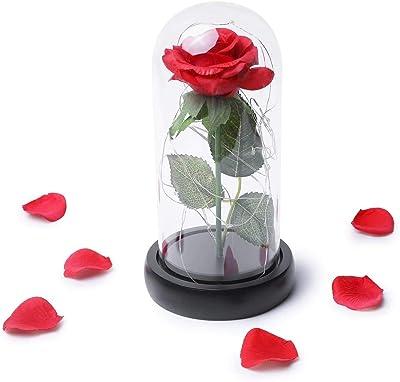 Violet 99AMZ La Belle et la B/ête P/étales de Rose enchant/ée Fleur avec lumi/ère LED f/ête des m/ères Mariage Anniversaire la Vie /éternelle Naturelle Rose pr/éserv/é Fleurs pour la Saint Valentin