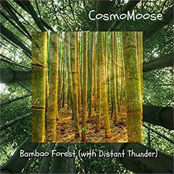 Bamboo Forest (With Distant Thunder)