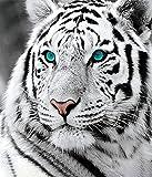 Puzzle Puzzle 1000 Pièces Yeux Verts Blanc Tigre Adulte Loisirs Divertissement Jouets Éducatifs Pour Enfants Décor De Noël u39
