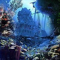 写真バックドロップ–スペイン語Shipwrecked Galleon–10x 10ft。シームレスなファブリック
