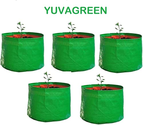 "YUVAGREEN Terrace Gardening Leafy Vegetable Green Grow Bag (12"" X 12"") - (Pack of 5)"