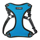 Best Pet Supplies Voyager Step-in Flex Dog Harness - All Weather Mesh, Step in Adjustable Harness for Small and Medium Dogs Turquoise, Medium