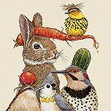 CasaJame Set di 40 (2 Confezioni da 20 Pezzi cad) Tovaglioli in Carta Monouso 3 Strati Veli 33x33cm Multicolore Motivo Animali Lepre Uccelli