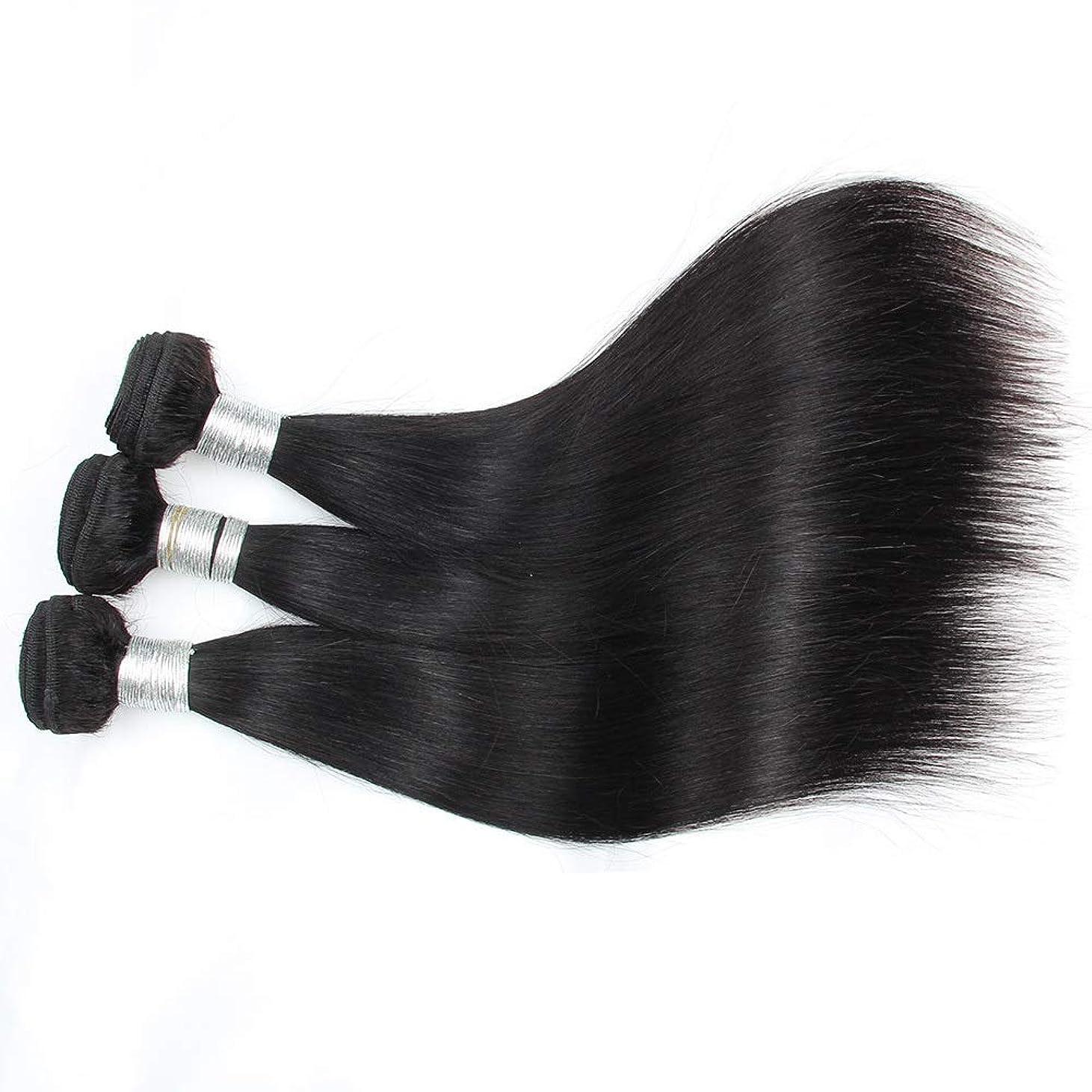 家主非アクティブ放つHOHYLLYA ブラジルの人間の髪織り1バンドル100%人毛エクステンションナチュラルブラックカラー横糸10-28インチロングストレートヘアウィッグウィッグ (色 : 黒, サイズ : 10 inch)