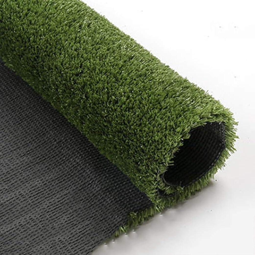 明るい下着メニューYNGJUEN 人工芝、15mmパイル高密度休暇用芝生、リアルガーデンペット犬用芝生 (Size : 2x1m)