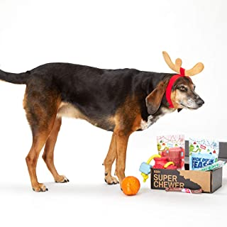 BarkBox Supersized 90s Throwback Electronic Dog Toy Bundle; Four Toys and One Bag of All Natural Treats Made in The USA