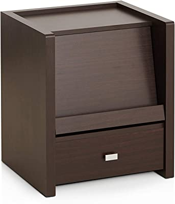 Furniture of America Ricardo Contemporary Wood End Table with 1-Open Shelf, Walnut