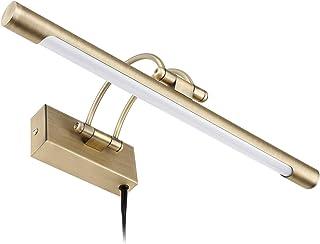 LEONLITE LED Picture Light, Full Metal Artwork Lamp with Swivel Lamp Head, 8W (40W Eqv.),..