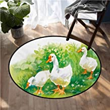 Rubber Duck Indoor Outdoor Rugs Goose in Farm Lake Plants Grass Reeds Flowers Pond Animals Geese Feathers Super Soft Carpet Floor Mat Home Decor D40 Inch