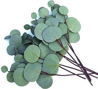 MaxFlowery Faux Silver Dollar Eucalyptus, Classic Artificial Silk Greenery Foliage Flower Filler,8 Stems Bunch