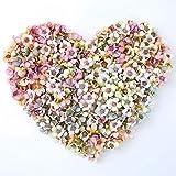 NWSX - Flores artificiales de seda para decoración, 100 unidades de 2cm