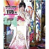 飯田麻由 20歳成人式 着物デジタル高画質写真集 ブルーレイRawデータあり [Blu-ray]