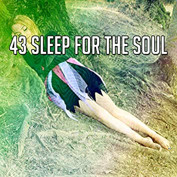 43 Sleep for the Soul