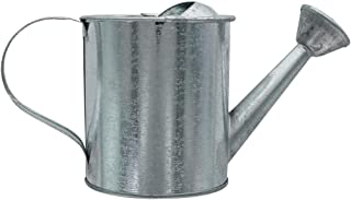 Darice Metal Watering Can: Galvanized, 3.5 x 7.5 inches