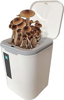 Mushroom Bonsai, Indoor Mushroom Growing Kit, White Flat Mushroom Growing Kit, Countertop, Table Or Windowsill Bonsai, Can...