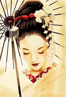 bribase shop Geisha Japanese New Giant Wall Art Print Poster G347 36x24