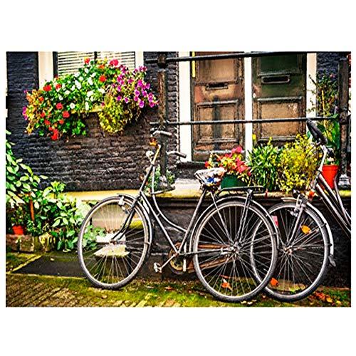 WLWIN DIY Diamant Malerei Kits Garten Fahrradhaus Landschaft DIY Diamant Strass Stickerei Kunst Handwerk Wohnkultur (40 * 60cm)