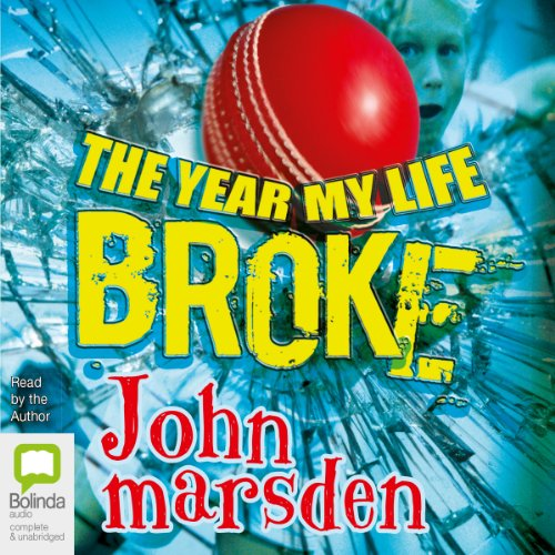 The Year My Life Broke audiobook cover art