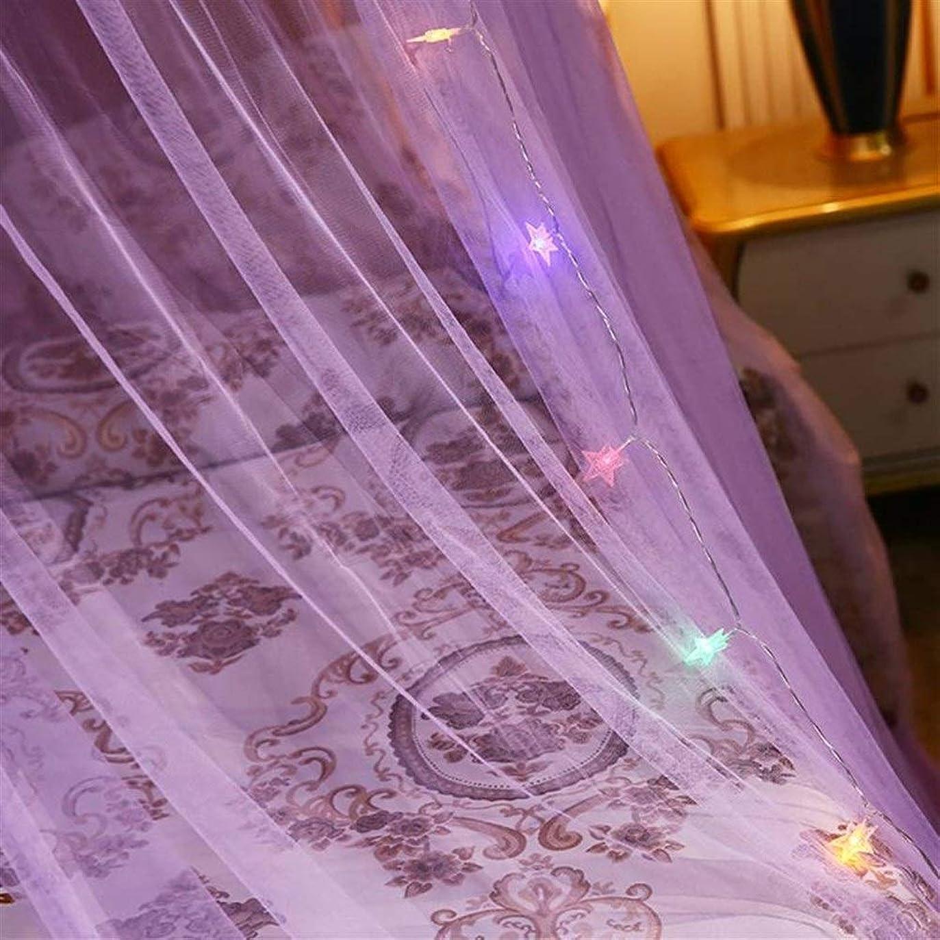 被るスペインぺディカブBed Canopy Mosquito Protection Net Elgant For Double Bed Repellent Tent Bed Curtain Bed Tent For Bedroom Decorative