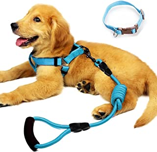 Best dog collar harness combo Reviews