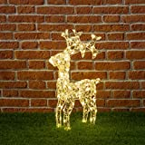 XMASKING Renna in Cristalli acrilici, H70 cm, 100 LED Bianco Caldo, Renne Luminose per Esterno, Decorazioni di Natale, luci Natalizie, Figure Luminose