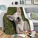 Mantas Invierno Perro De Césped Blanco - 3D Suave Cálida Manta Impresión Manta Franela de Felpa Soft Cálidas - Multiuso de Manta Bebe-para sofá de Oficina y Dormitorio,130x150 cm
