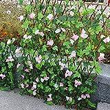 Cerca artificial de setos artificiales con hojas artificiales para jardín, valla de enrejado retráctil de madera para decoración del hogar